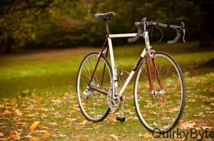 Main Types of Bikes You Can Enjoy