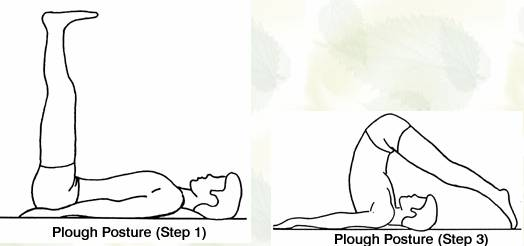 yoga-get-back-shape (3)