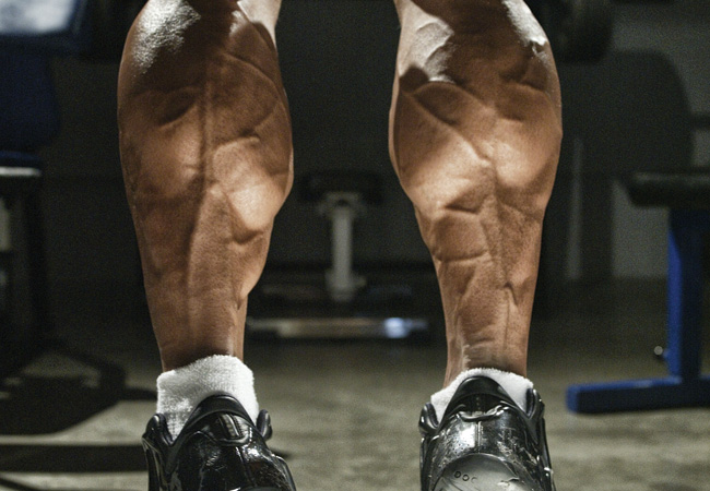 Photo of 3 Ways To Turn Your Calves Into Cows