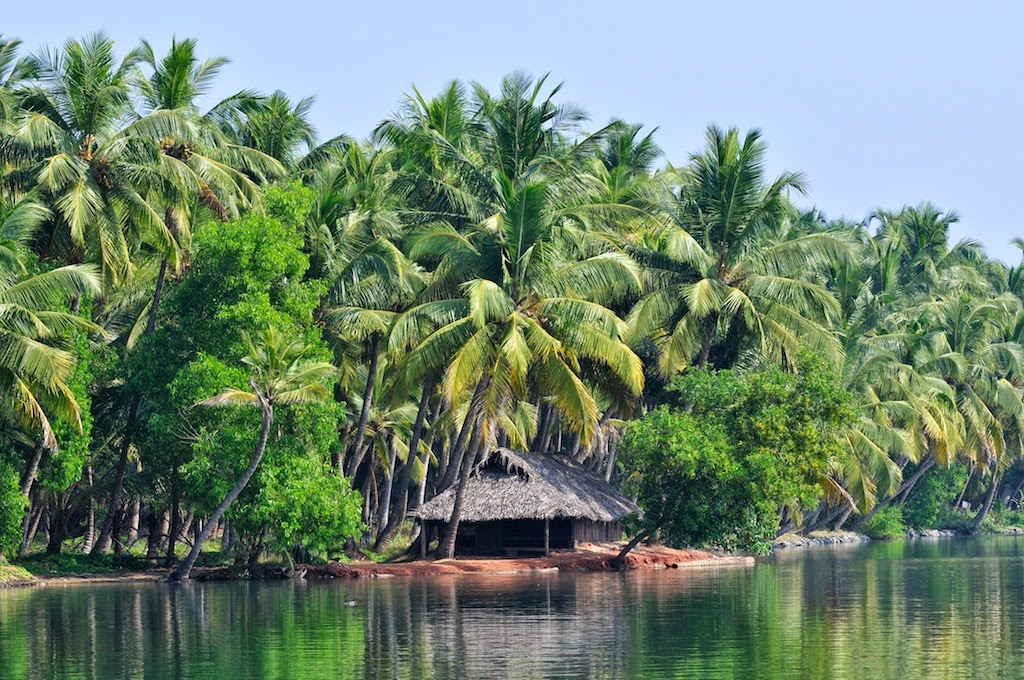 Photo of Backwaters: The Tranquil Water of the Indian Lakes