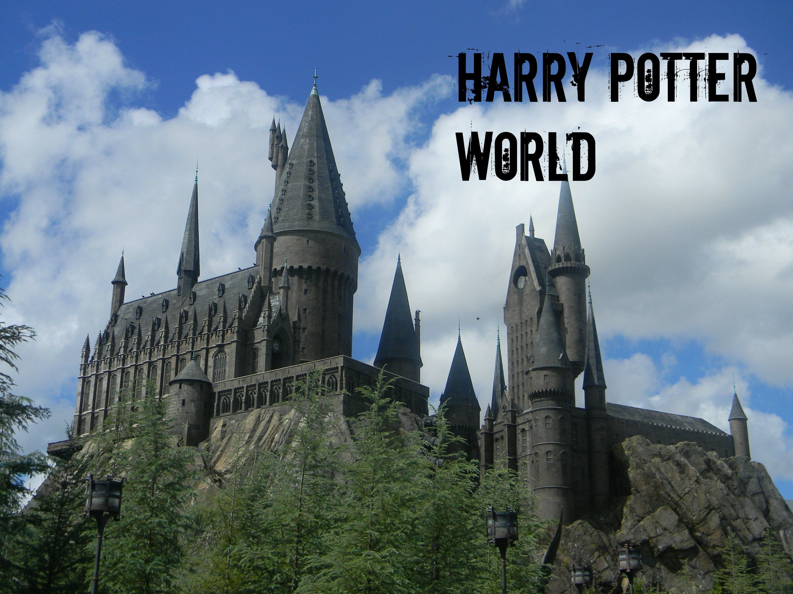 Photo of Let's Make The Wish To Be A Part Of Potter World Come True!