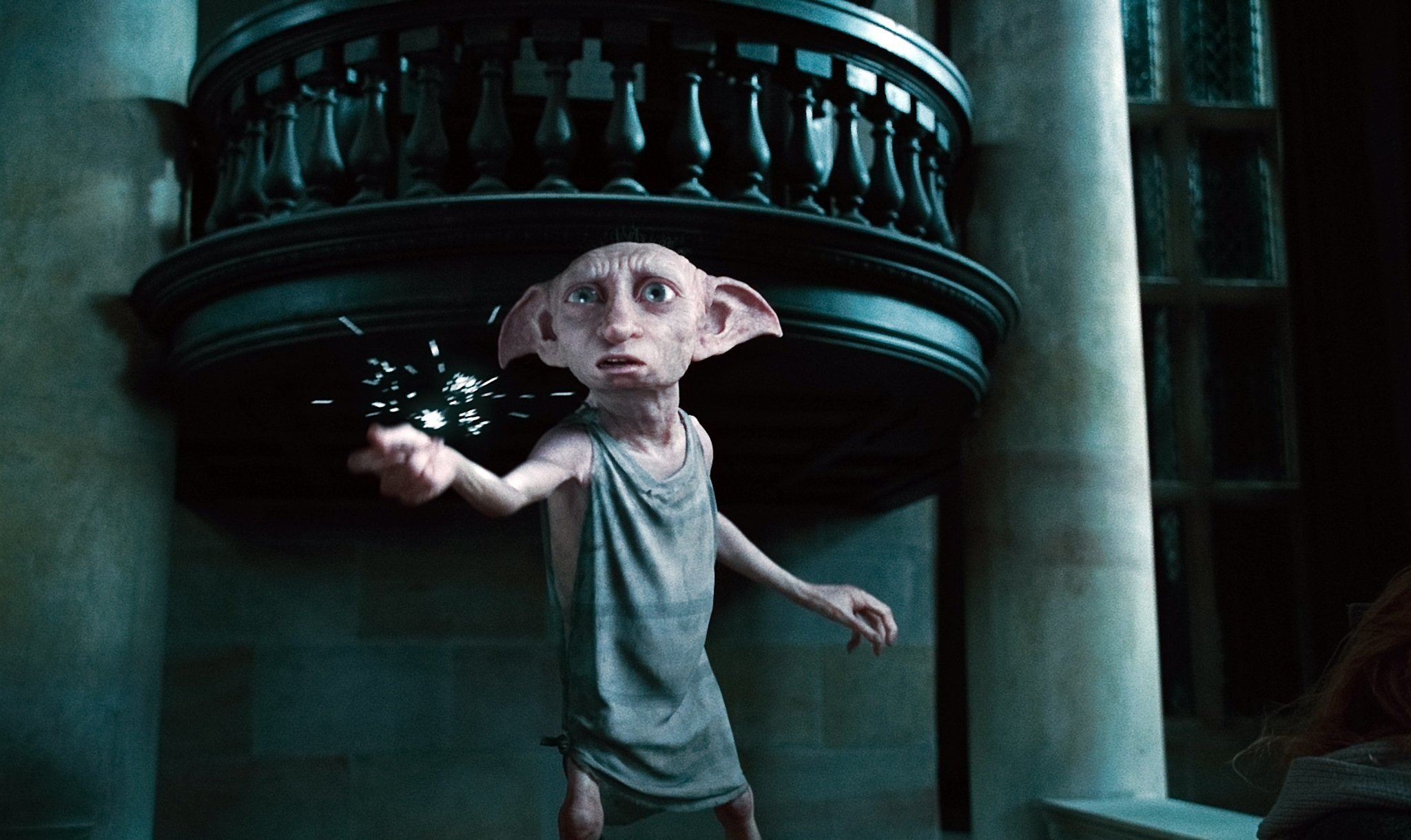 Photo of 7 Reasons Why Dobby Is The Best Buddy Ever