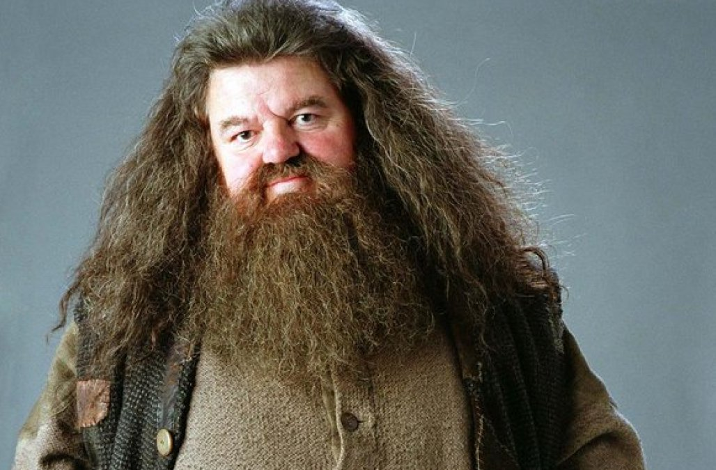 Photo of Harry Potter: 7 Things You Never Knew About Hagrid