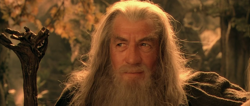 Photo of 10 Hilarious Memes on GANDALF From Lord of the Rings