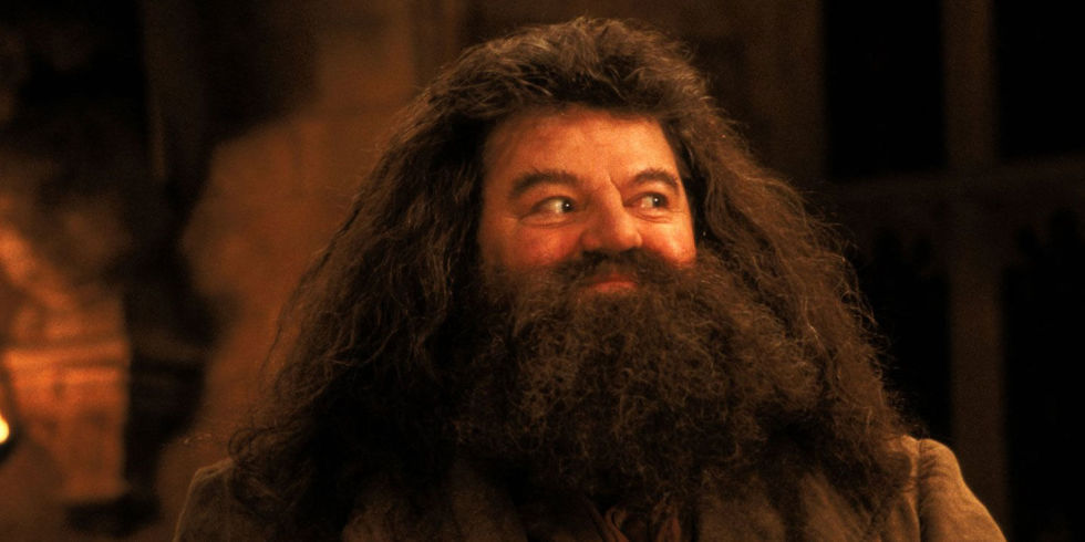 Photo of 10 Memes On Hagrid From Harry Potter Franchise That Will Bring Smile Onto Your Face