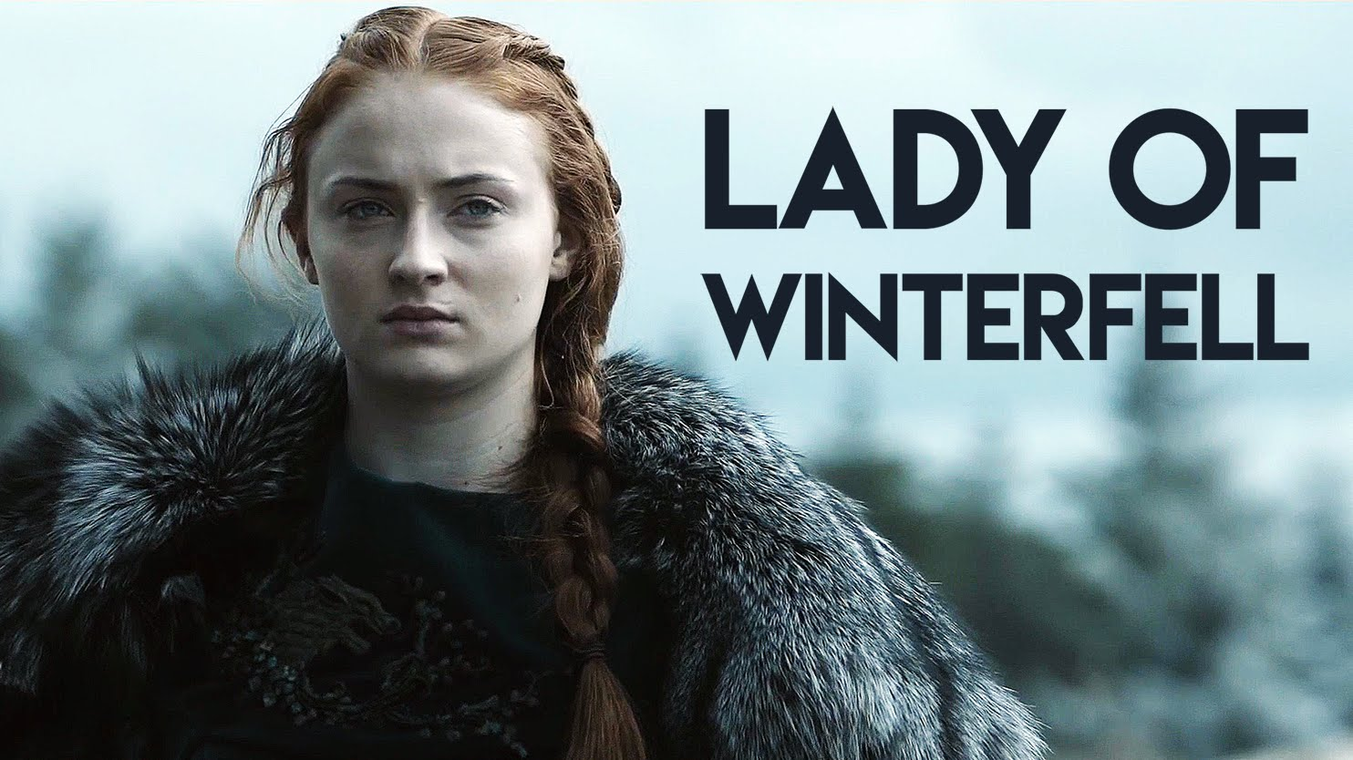 Photo of 7 Crazy Memes on Sansa Stark That Will Show She Ain't Just A Damsel in Distress