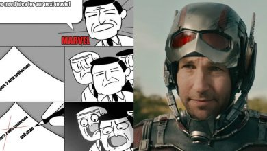 Photo of 18 Humiliating Memes On Ant-Man Which Rips Him Apart