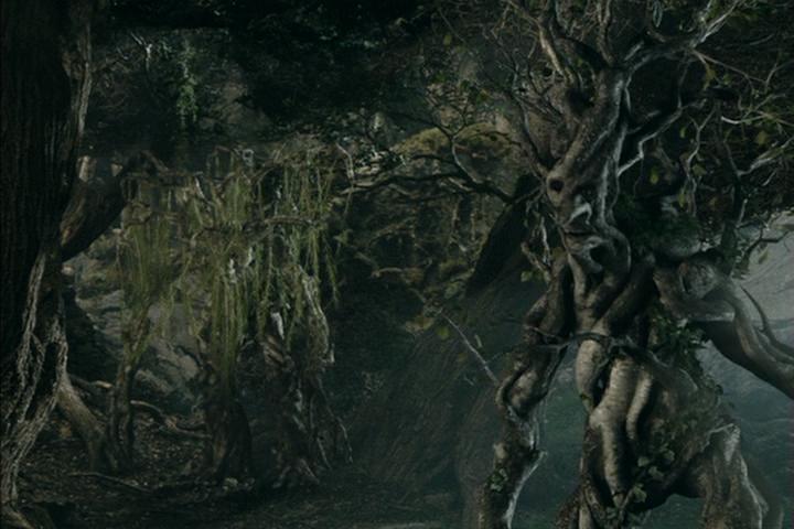 Ring Wraith Plant