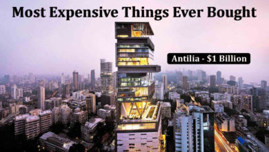 Photo of 14 Most Expensive Things Ever Bought Which Will Make You Feel Poor