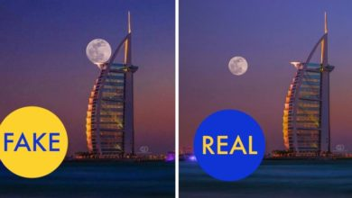 Photo of 15 Images That Went Viral But Were Actually Fake/Photoshopped