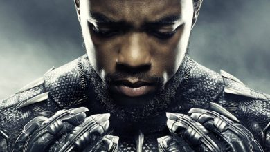 Photo of 20 Amazing Things About Black Panther That You Probably Didn't Know