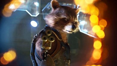 Photo of Guardians of the Galaxy Vol. 2 – The Creator of Rocket Raccoon May Have Been Found