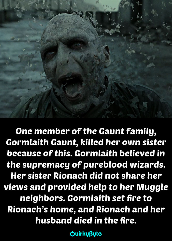20 Strange Things You Didn T Know About The Voldemort S Family
