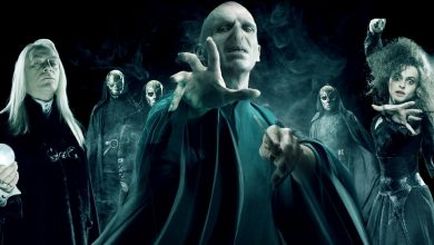 Photo of 20 Strange Things You Didn't Know About The Voldemort's Family