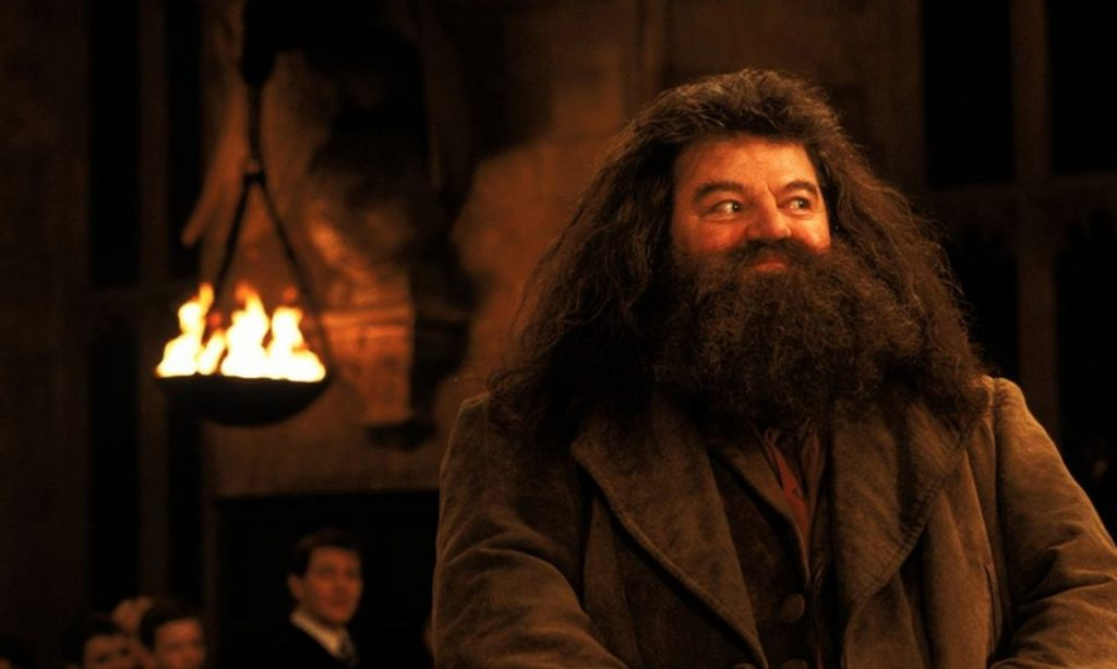 Harry Potter Characters with Their Own Movie