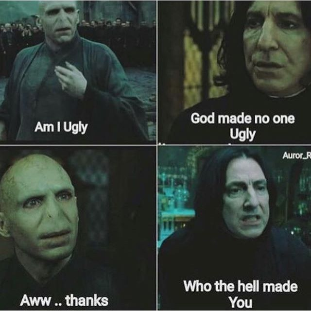 31 Funniest Voldemort Memes That Will Make You Laugh
