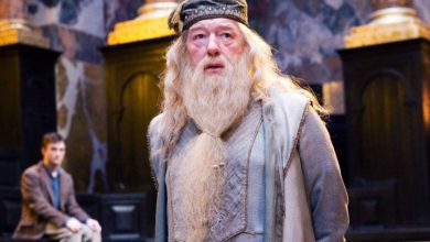 Photo of 10 Things about Albus Dumbledore That Every Potterhead Must Know