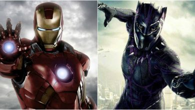Iron Man vs Black Panther