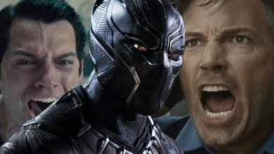 Photo of DC Fans Are Outraged by Rotten Tomatoes Score For Black Panther