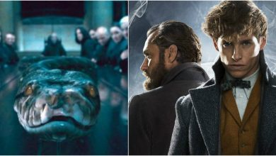 Photo of New Fan Theory Suggests That Fantastic Beasts Might Explain Nagini's Origin Story