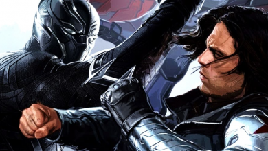 Photo of Black Panther's First Fight With Winter Soldier Revealed