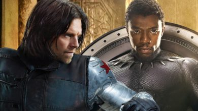 Photo of Black Panther Post-Credits Scene With Bucky Had Much More Than Meets the Eye