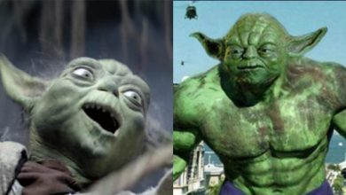 Photo of 33 Hilarious Yoda Memes That Will Make You Laugh Hard