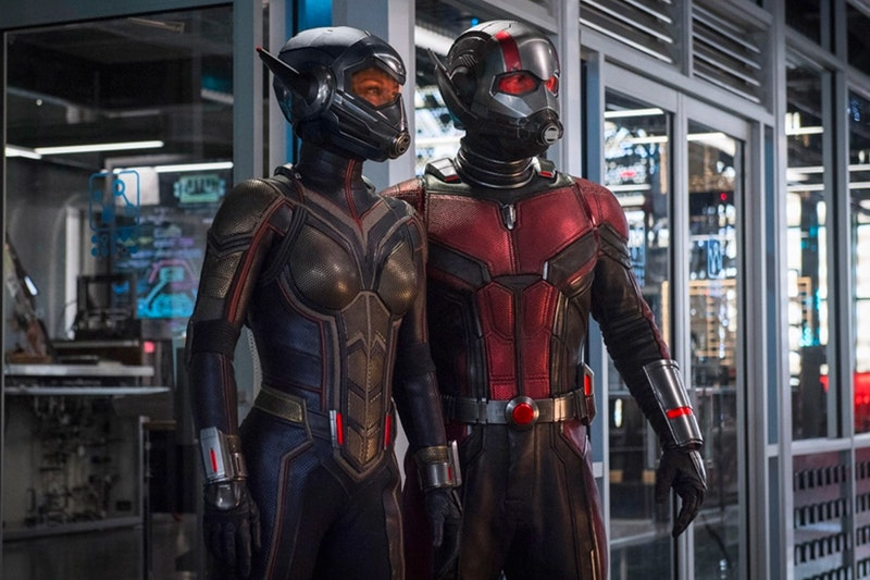 Ant-Man And The Wasp Director Reveals Information On Other Avengers Cameos