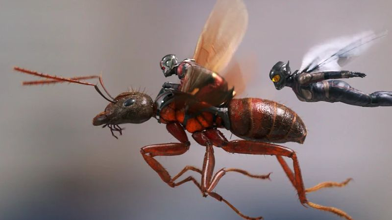 Post Credits Scenes of Ant-Man And The Wasp