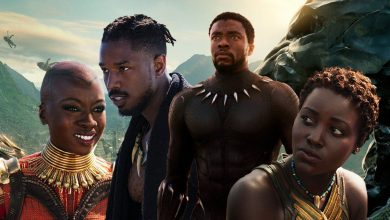Photo of Black Panther Has Broken Yet Another Box Office Record And It's Unstoppable!