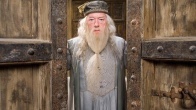 Photo of 10 More Things You Did Not Know About Albus Dumbledore