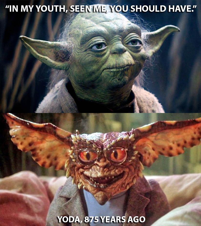 Yoda Meme 33 Hilarious Yo...
