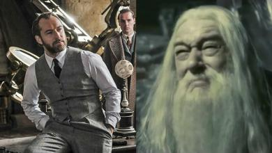Photo of 37 Funniest Dumbledore Memes That Only Its True Fans Will Get