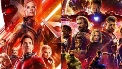 Photo of Ant-Man And The Wasp Rotten Tomatoes Score Revealed And It Is Better Than Infinity War