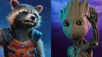 Photo of Infinity War – Groot's Final Words To Rocket At The End of The Movie Will Make You Weep!!!