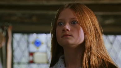 Photo of 10 Things We Hate About Ginny Weasley In The Harry Potter Movies