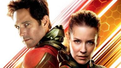 Photo of 15 Fan Theories in the MCU After Ant-Man and the Wasp
