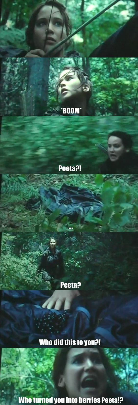 30 Funniest The Hunger Games Memes That Will Make You