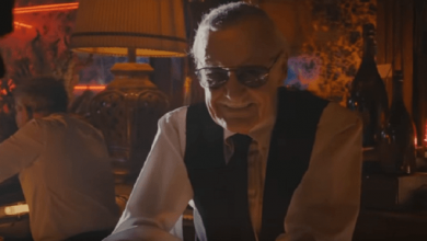 Photo of Stan Lee Has A Cameo In A DC Movie