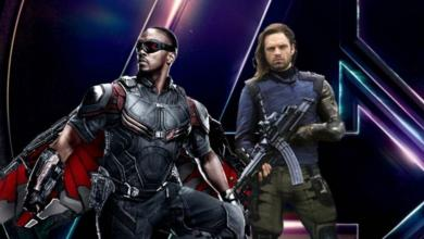 Photo of The Winter Soldier & Falcon TV Series Coming to Disney Play