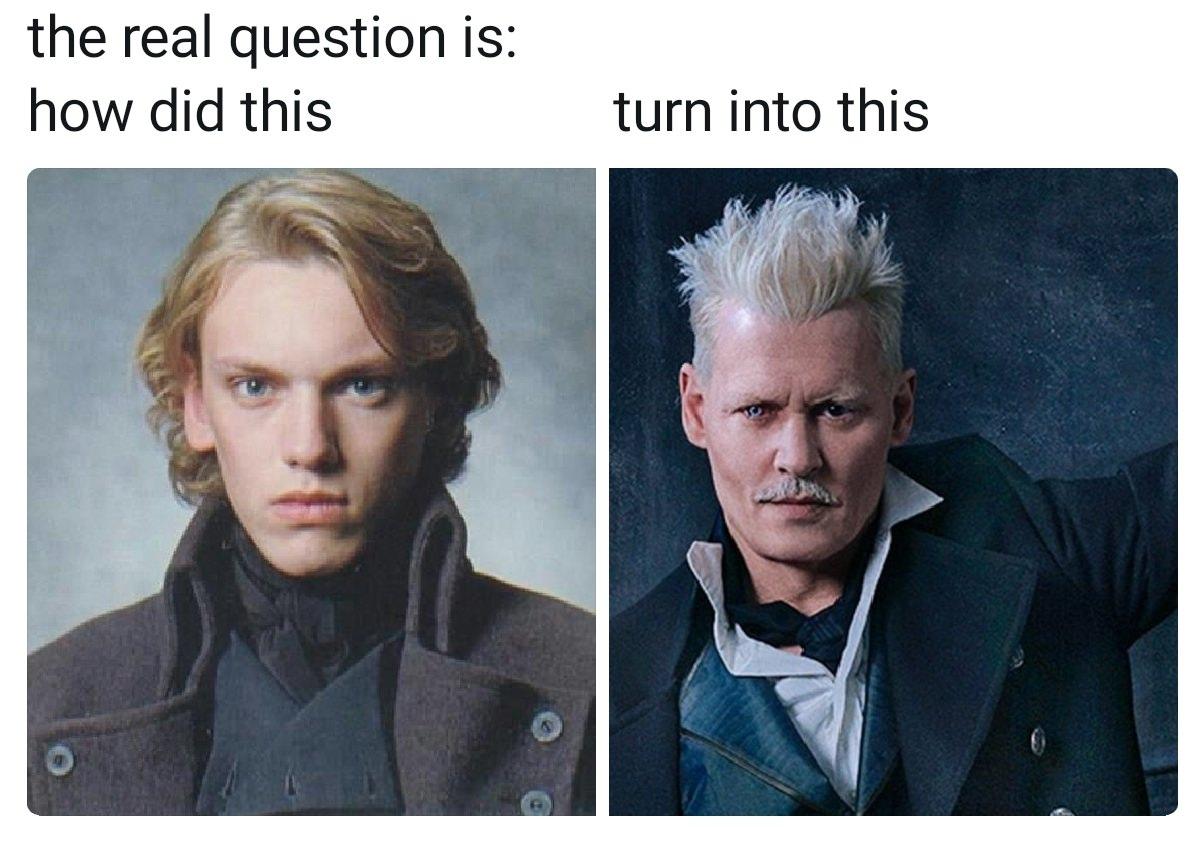 Fantastic Beasts Memes