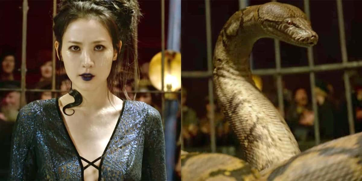 Photo of The Nagini Plot Reveal Sparks Another Controversy For Fantastic Beasts 2
