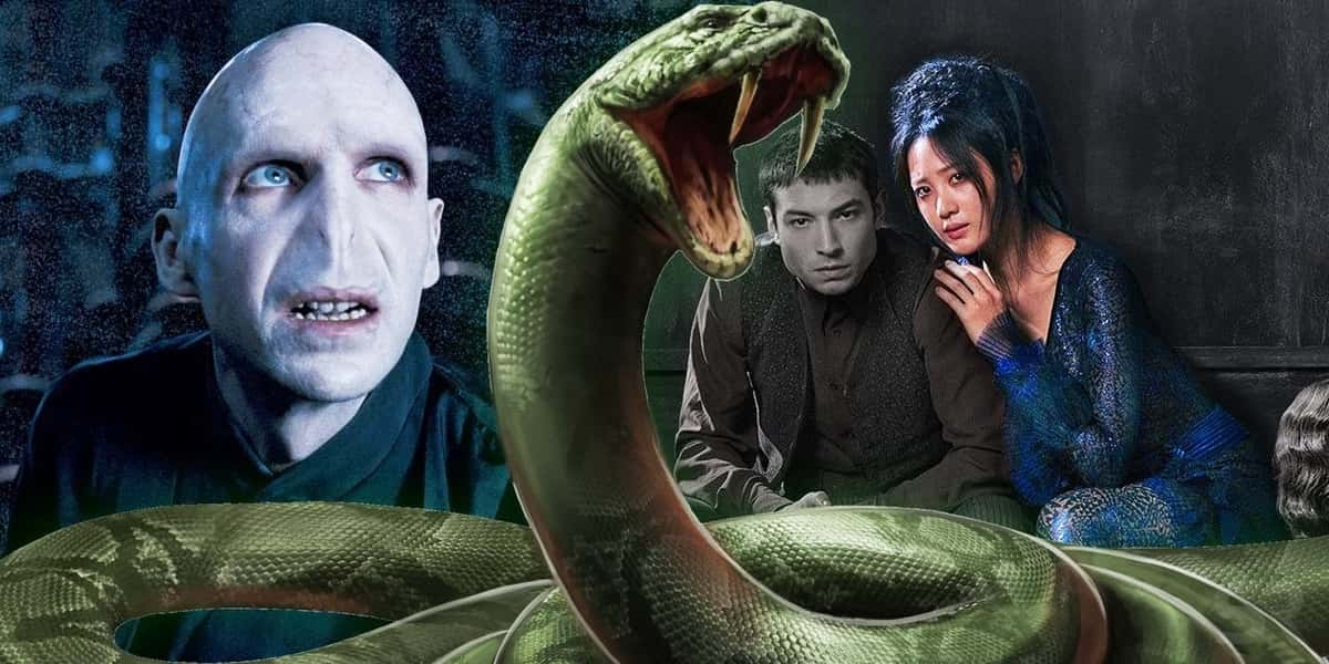 Fantastic Beast Theory Credence Lord Voldemort