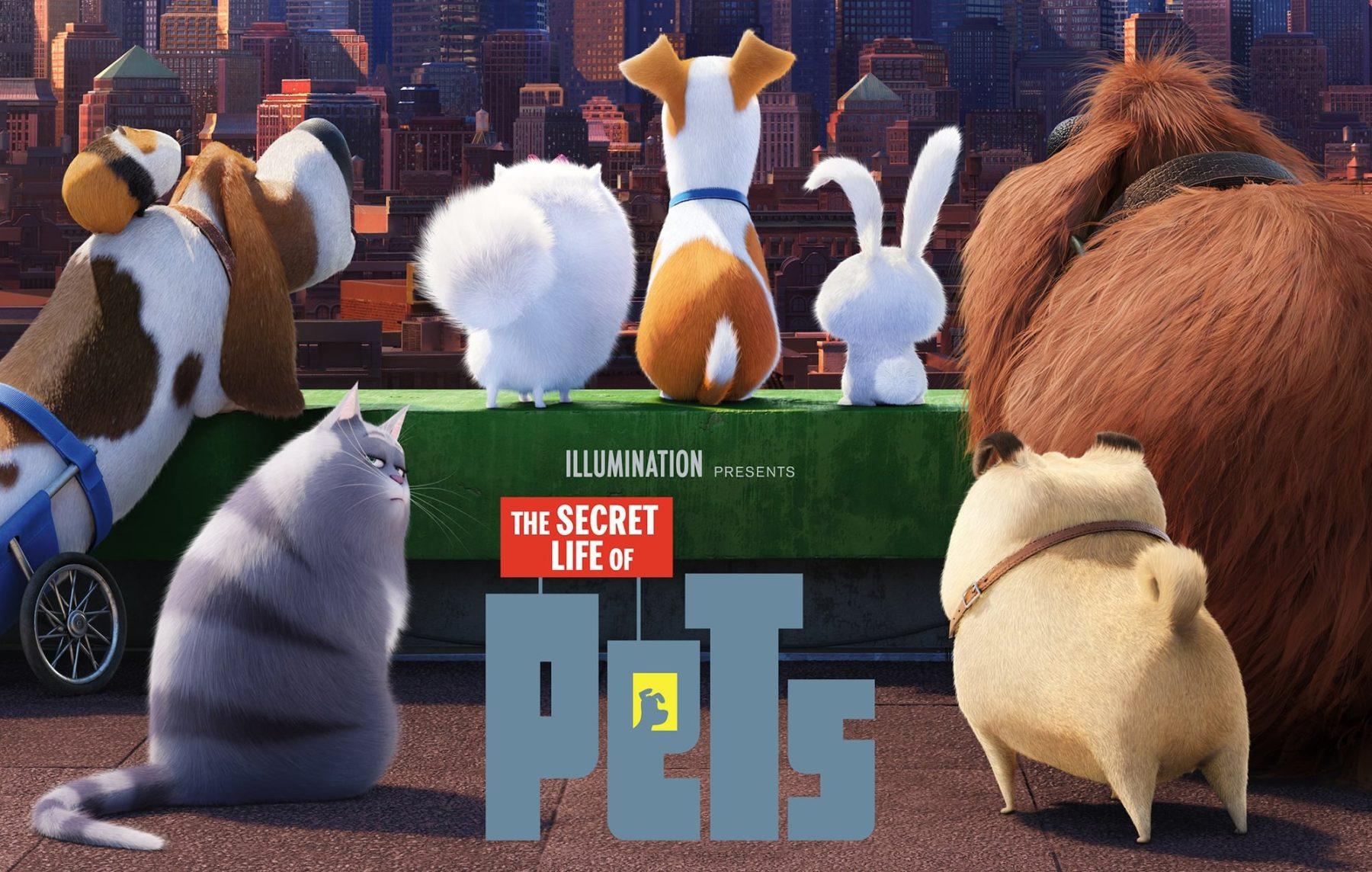 Upcoming Movie Sequels