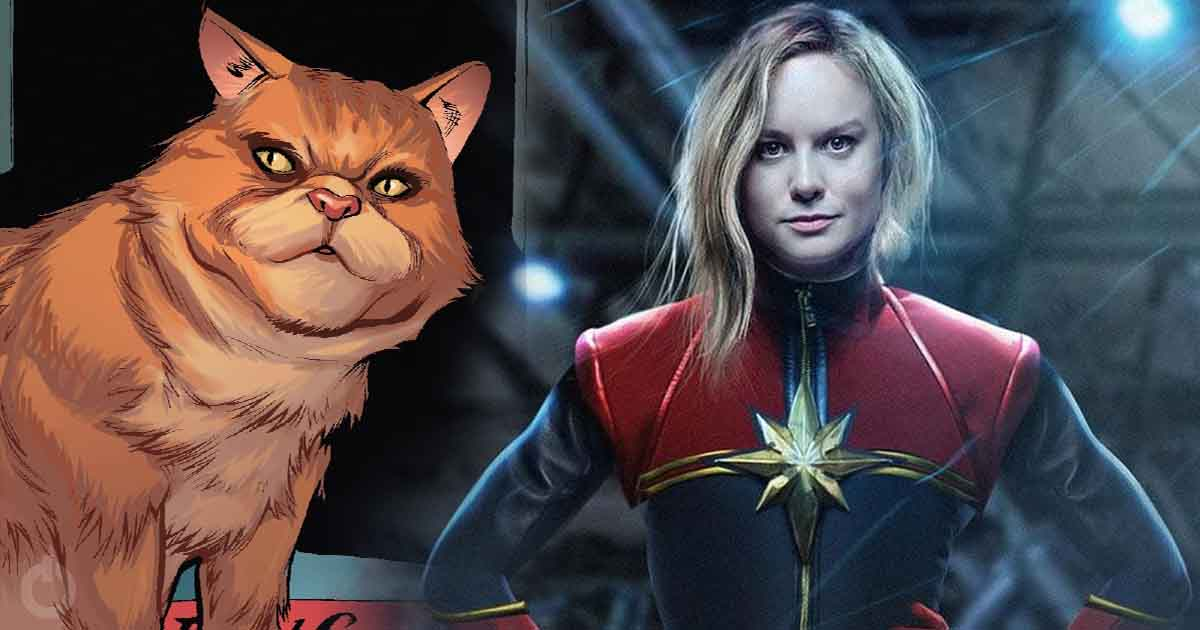 Facts About Goose Captain Marvel Cat