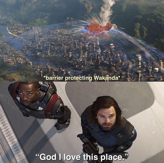 Winter Soldier And Falcon Memes