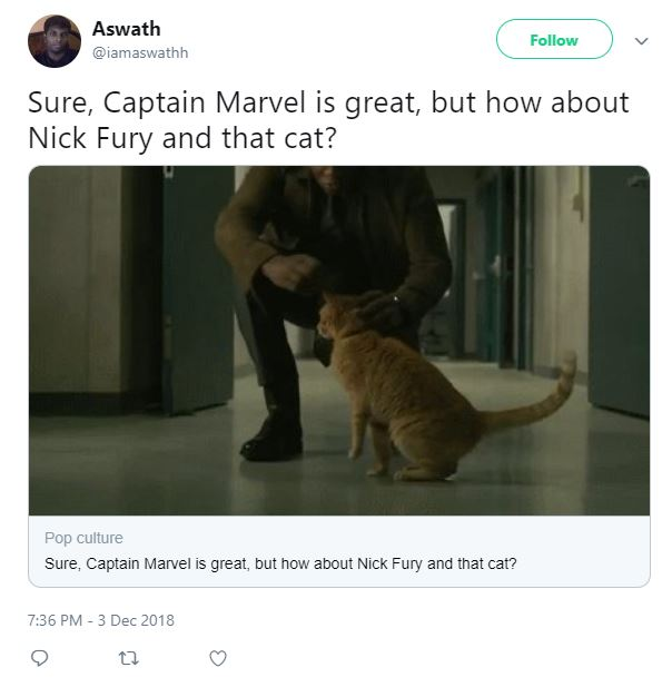 Captain Marvel Cat Nick Fury