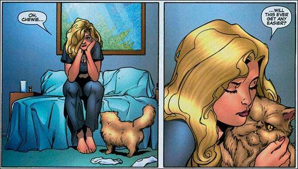 Captain Marvel Carol Danvers Cat