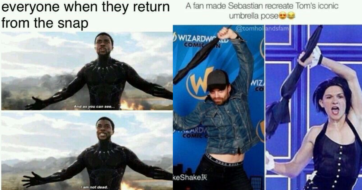 Photo of 25 Best MCU Funny Posts We've Found From Across The Internet