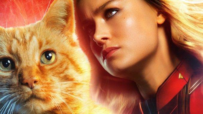Photo of Captain Marvel Theory Suggests Goose Can See The Future